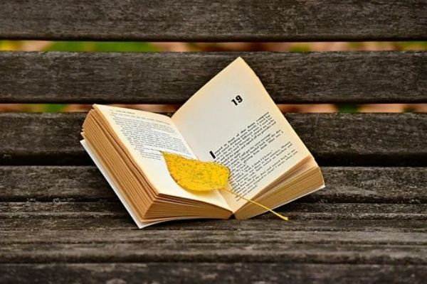 When Do You Know You Are An Avid Reader?