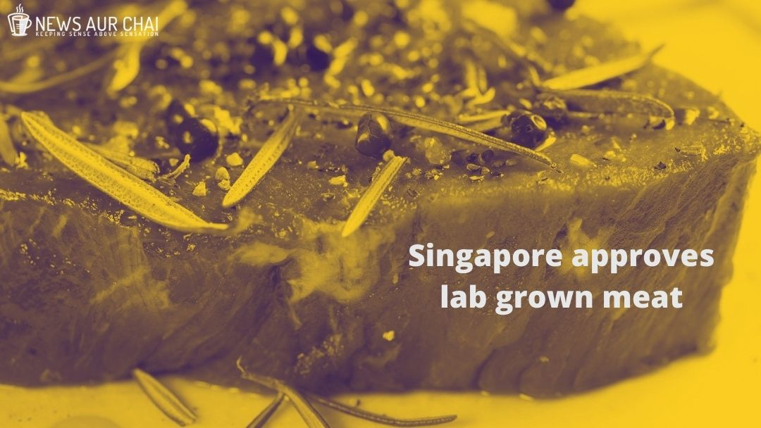 Singapore approves lab grown meat